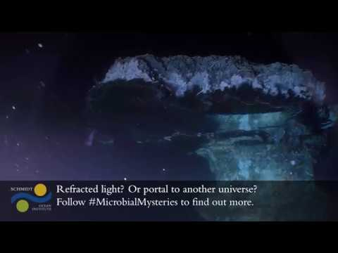 Microbial Mysteries - Big Pagoda Pools - Hydrothermal Vent Structure