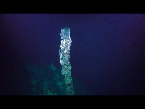 Pescadero Vent Diving - 4K ROV Highlights - FK181031