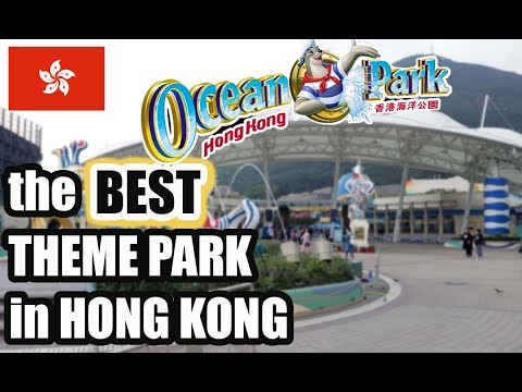 BEST theme park in HONG KONG | OCEAN PARK VLOG 2019