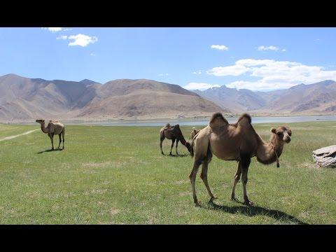 Karakoram Highway: The Border of China and Pakistan