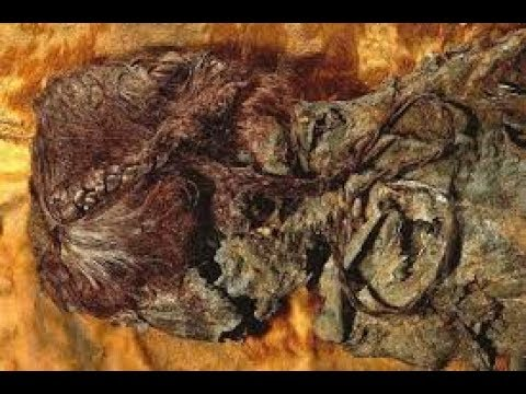 World's oldest mummified bog body found in Europe