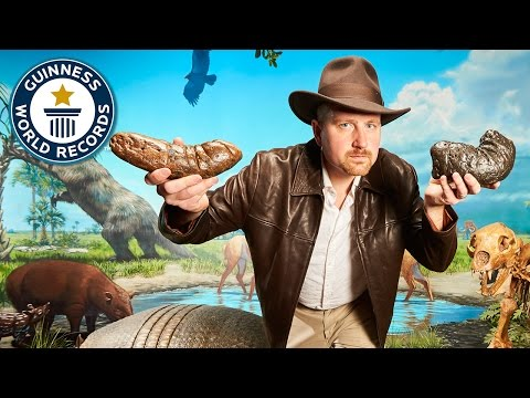 Dinosaur poop collection - Meet the Record Breakers