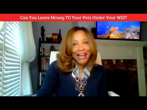 Nancy Sprattlin: Can You Leave Money TO Your Pets Under Your Will?