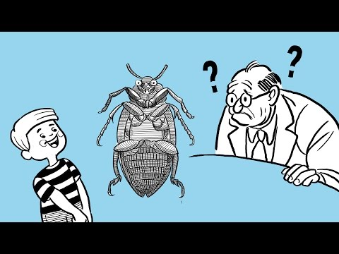 Wittgenstein's Beetle in a Box Analogy