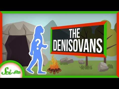 Denisovans: Our Mysterious Cousins That Made Us Better
