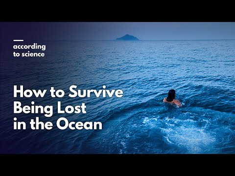 How to Survive Being Lost in the Ocean, According to Science