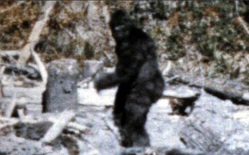 Bigfoot, Yeti, and Other Ape