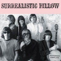 13. Surrealistic Pillow
