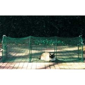 Secure Outdoor Cat Run