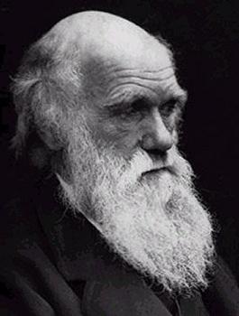 Charles Darwin L