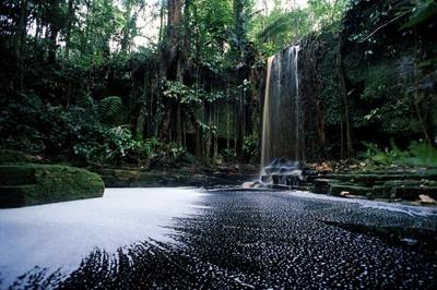 Photo Lg Suriname