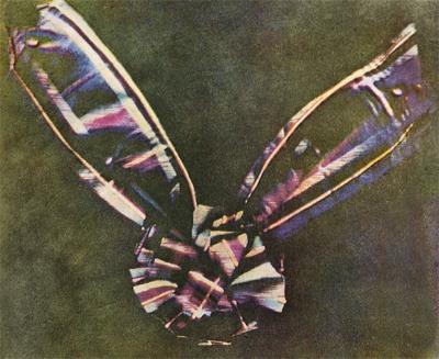 733Px-Tartan Ribbon