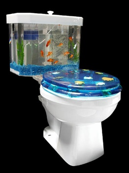 Fish-Bowl-Toilet