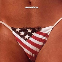Black Crowes - Amorica 1