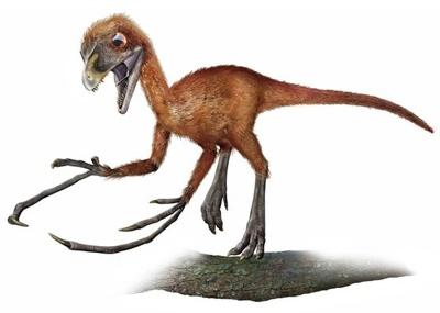 Epidendrosaurus800Pn0