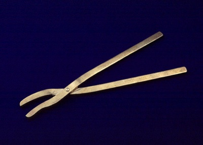 Surgical Forceps Found At Pompei
