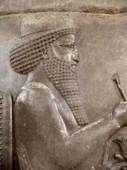 Darius.Jpg