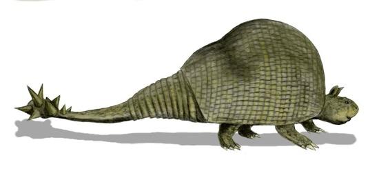 Doedicurus Bw