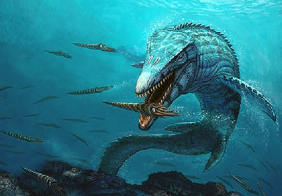 Miller Mosasaur