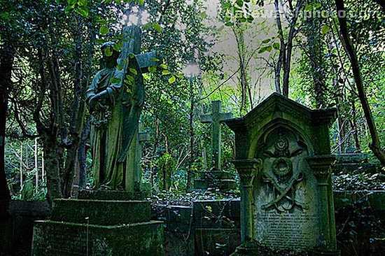 highgate-cemetery.jpg