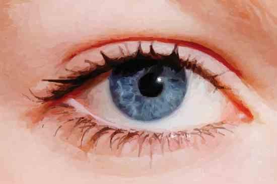 Eyes-Closeup--La-Mosca-2