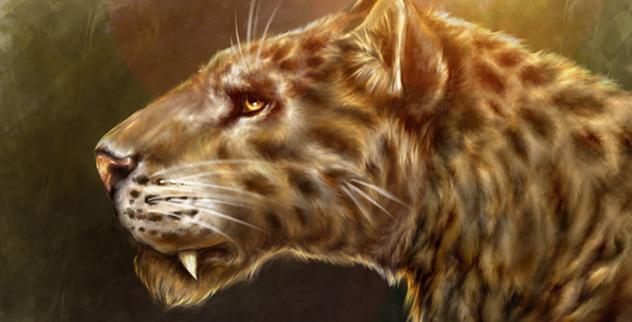 10 Huge Prehistoric Cats - Listverse