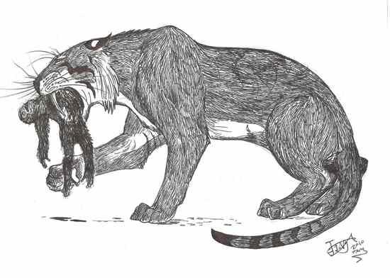 Very  Very Big Cat By Hodarinundu-D332Oxj
