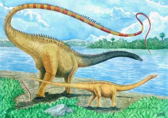 Diplodocus-Vladimir-Nikolov