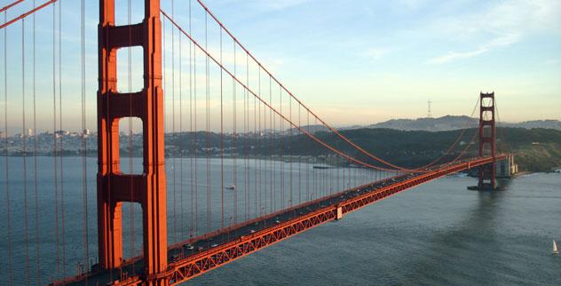 Golden Gate Sharks of The Golden Gate Bridge