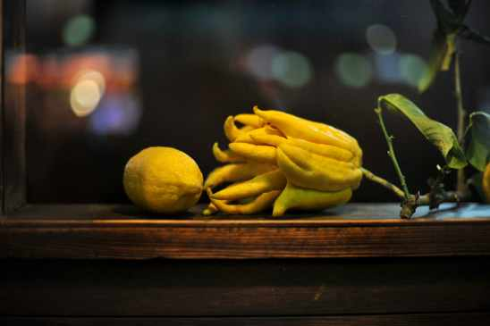 Citrus Medica Sarcodactylis 0