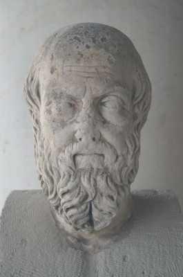 Herodotus Agora Mus1