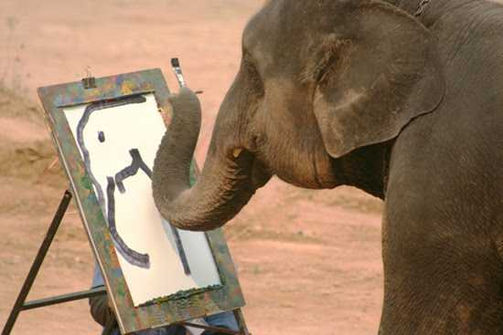 Elephant-Painter