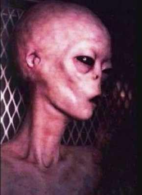Alien-3