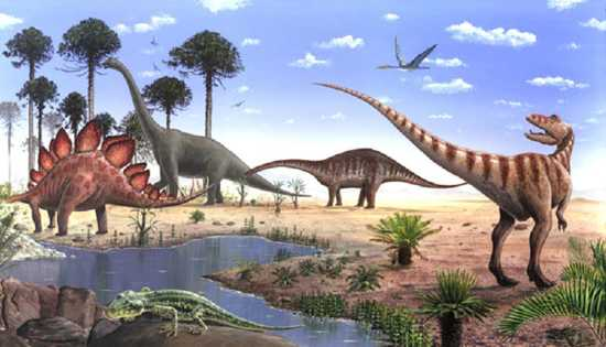 Jurassic period plants and animals - photo#24