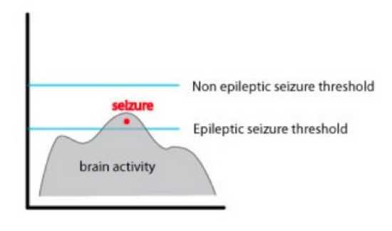 Seizure Threshold