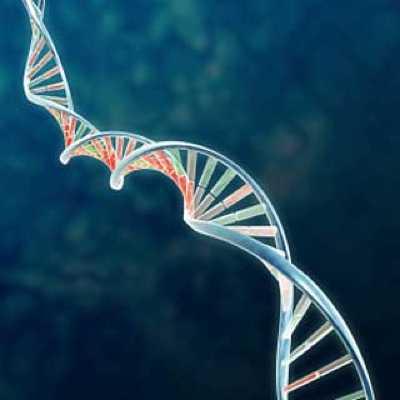 Ocular-Gene-Therapy-Treatment 1