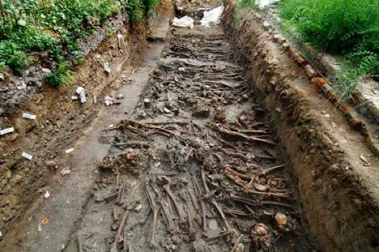 Plague-Grave2-709728