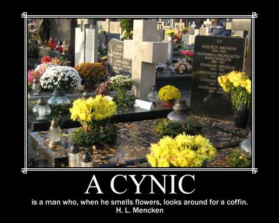 Cynic