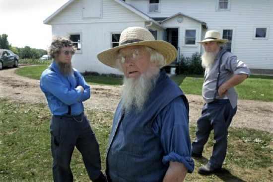 Large Amish-Forgive