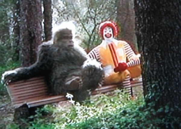Top 10 reasons bigfoot probably doesnt exist listverse the average bigfoot sighting is purported to place the creature at approximately 8 9ft tall and at 500 600lb in weight the problem here is that such an sciox Images