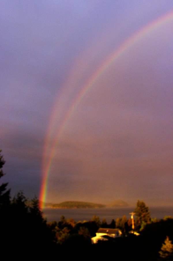 Dj Rainbow-Twinned Reflectionrainbow Wc