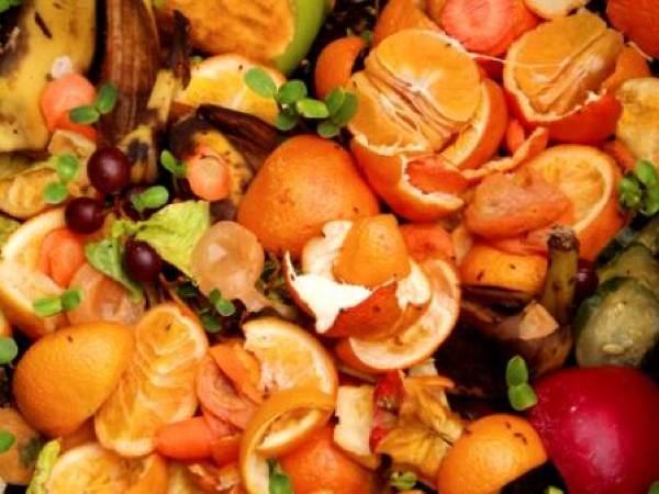 Kitchen-Compost Food-Scraps