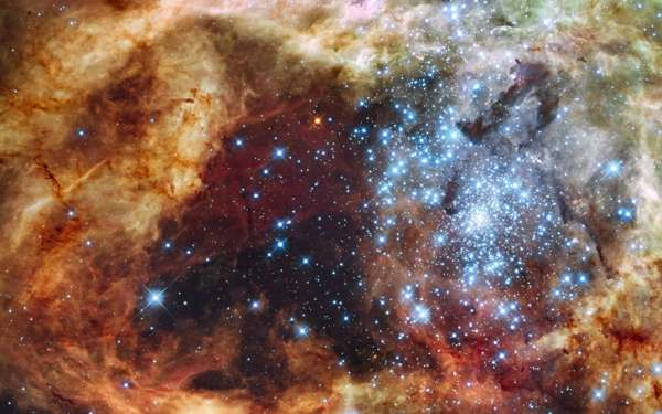 R136, showing some of the largest blue stars we know to exist