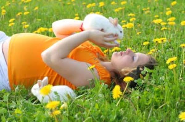 Rabbit-Pregnancy-1
