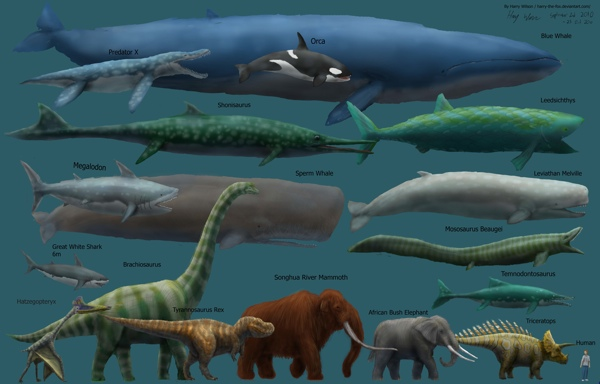 Megafauna Size Comparison Mk2 By Harry The Fox-D2Xt9Nb