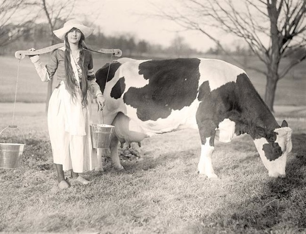 Milk-Maid