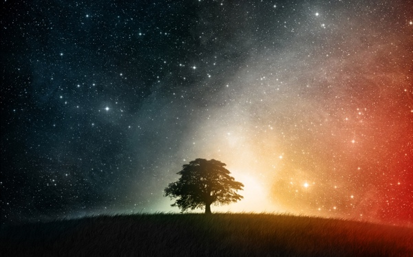 night_sky_tree_universe-1280x800.jpg
