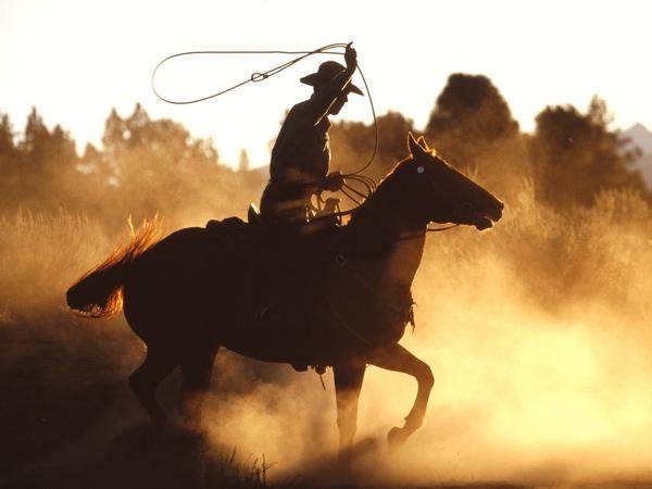 Ws Cowboy With Lasso 1600X1200