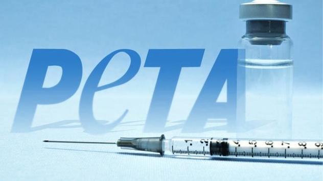 Peta-Needle