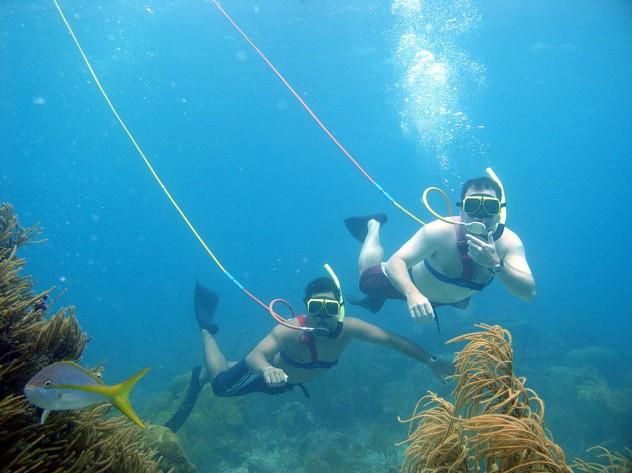 Snuba_divers_underwater